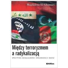Między terroryzmem a radykalizacją. Specyfika działalności organizacji Daesz