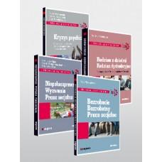 Pakiet: Biblioteka pracy socjalnej