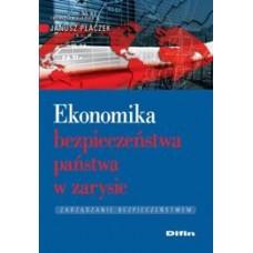 Ekonomika bezpieczeństwa państwa w zarysie