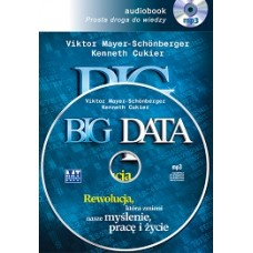 Big Data. Audiobook