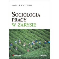 Socjologia pracy w zarysie